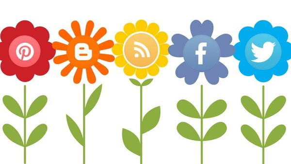Social Media 'Pivotal' in Promotion of SMBs