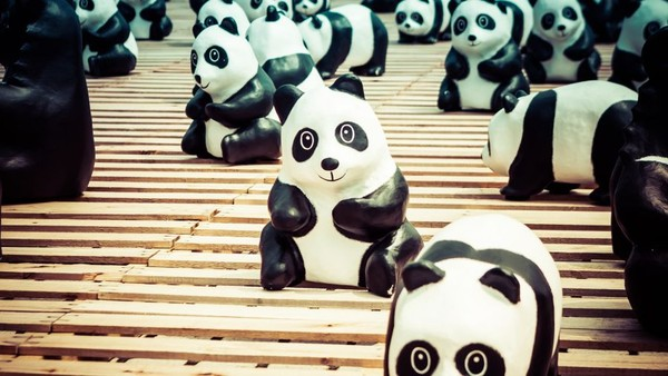 Google Panda: How to Identify, Eliminate and Avoid Ranking Losses